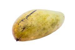 Mogen mango på vit bakgrund royaltyfri foto