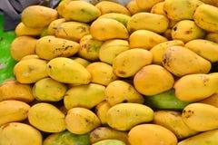 Mogen mangofrukt Arkivbilder
