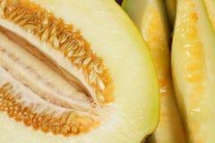 Mogen melon Royaltyfri Foto