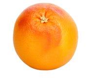 Mogen ny och saftig grapefrukt Royaltyfri Bild