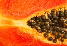 mogen papaya Arkivfoton