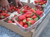Mogen röd jordgubbe i behållare Royaltyfri Bild