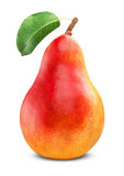 Mogen röd pear Arkivbild