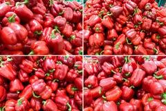 Mogen röd peppar på marknaden arkivfoton