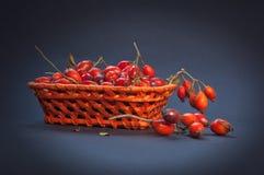 Förfölja rosa frukt arkivbild
