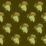Mogen söt grupp av druvor Sommarskörd royaltyfria foton