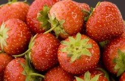 mogen s-jordgubbe Arkivbilder