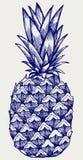 Mogen smaklig ananas Royaltyfri Fotografi
