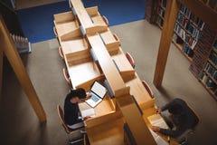 Mogen student som studerar i arkiv royaltyfri foto