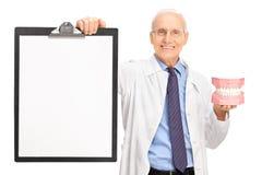 Mogen tandläkare som rymmer en tandprotes och en skrivplatta Arkivfoton