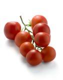 Mogen tomat Arkivbilder