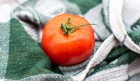 Mogen tomat på träbräde Arkivfoto