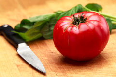 Mogen tomat som är klar att klippa med nya Basil On Cutting Board royaltyfri bild