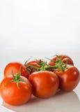 Mogen tomatgrupp på plattabunken på vit bakgrund, lodlinje arkivbilder