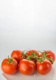Mogen tomatgrupp på plattabunken på vit bakgrund, lodlinje royaltyfri bild