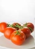 Mogen tomatgrupp på plattabunken på vit bakgrund, lodlinje arkivbild