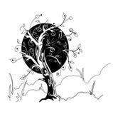 mogen tree Royaltyfria Foton