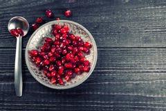 Moget granatäpplefrö med silverskeden Fotografering för Bildbyråer