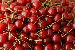 Moget körsbärsrött bruk för bästa sikt för frukter som bakgrund Royaltyfria Foton