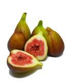 Moget och klart att äta nya fikonträd arkivfoto