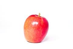 Moget rött äpple på en vit bakgrund. Royaltyfria Foton