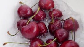 Moget saftigt mörkt - röda Cherry Berry Falling Down i vatten stock video