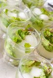 mogitos - mojitos Stock Photography