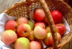 Mogna äpplen i korgen Royaltyfri Fotografi