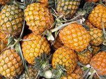 Mogna ananors på marknad och bakgrund Arkivfoton