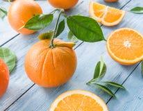 mogna apelsiner Royaltyfria Bilder