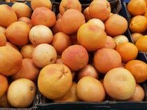 Mogna apelsiner på en supermarket Royaltyfria Bilder
