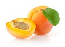 Mogna aprikors med bladet Arkivfoto