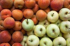 Mogna aprikors och äpplebakgrund royaltyfria bilder