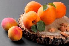 Mogna aprikors på en träställning på en svart bakgrund Arkivfoto