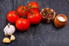 Mogna aptitretande ljusa tomater med pepparkorn, vitlök och saltar på en svart bakgrund, där är rum för text Royaltyfri Fotografi