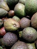 Mogna avokadon på marknaden fotografering för bildbyråer