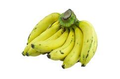 mogna bananer royaltyfria foton