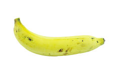 mogna bananer Arkivfoto