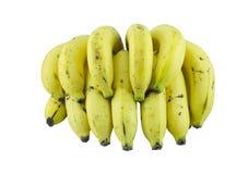 mogna bananer arkivbilder