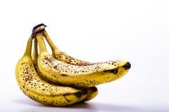 Mogna bananer på vit bakgrund Arkivbild