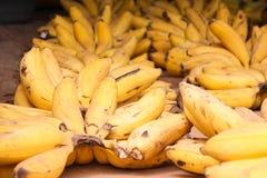 Mogna banannas arkivfoton