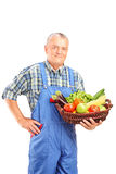 Mogna bondeinnehav en korg mycket av nya grönsaker royaltyfria bilder