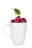 Mogna Cherry i en kopp Royaltyfri Fotografi