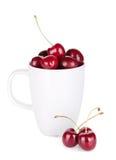 Mogna Cherry i en kopp Arkivbild