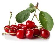 Mogna Cherry på vit bakgrund Royaltyfri Foto