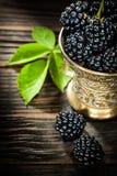 Mogna dewberries i metall bowlar på tappningträbräde royaltyfria bilder