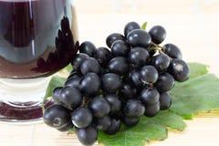 Mogna druvor och vin Royaltyfri Fotografi