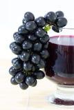 Mogna druvor och vin Royaltyfria Foton