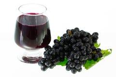Mogna druvor och vinisolat Arkivfoton