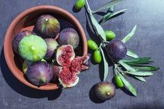 mogna figs olivgrön Royaltyfria Foton
